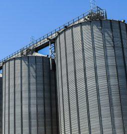 Otkup ječma, uljane repice i pšenice