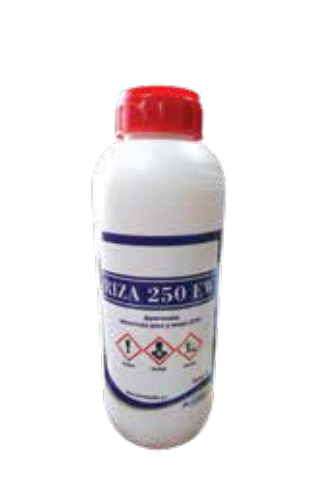 Riza 250 EW